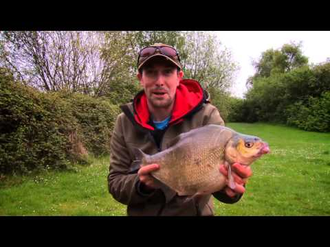 ***FOX FISHING TV*** Specialist Knowledge FREE DVD