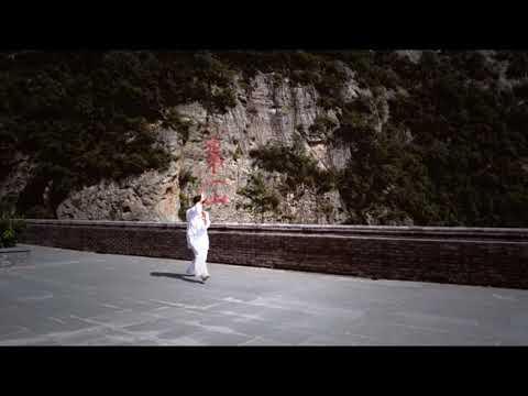 Xing Yi Quan del Tigre y el Dragón