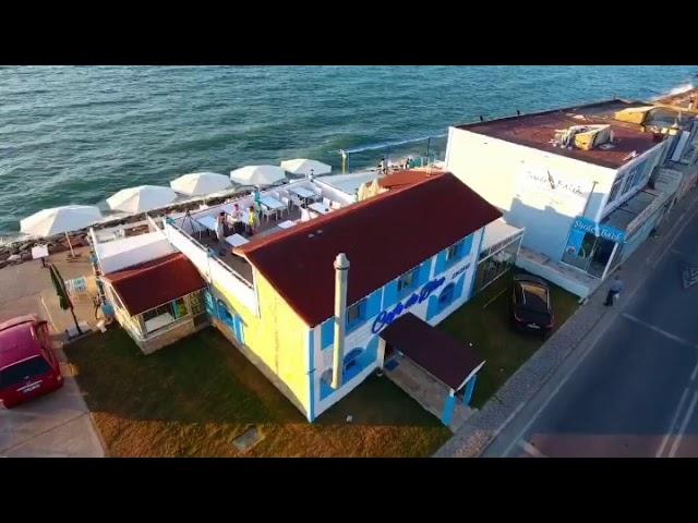 cafe de blue video