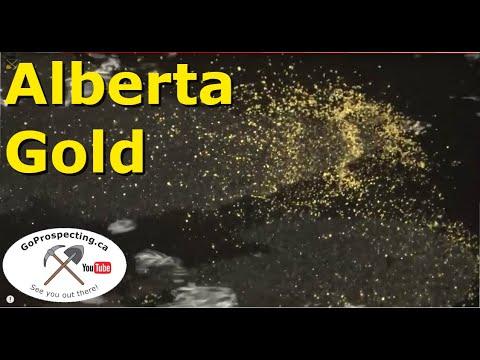 Highbanking The North Saskatchewan River -Alberta Flour Gold