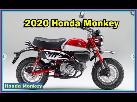 2020 Honda Monkey And 2020 Super Cub Review Youtube