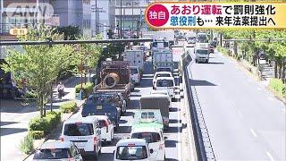 """""""あおり運転""""で罰則強化 懲役刑を導入(19/12/06)"""