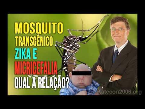 Virus Zika timo illuminati: ocultismo, papa Francisco y despoblación mundial