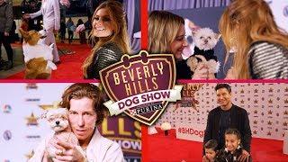 The Beverly Hills Dog Show (NBC) Ashley Tisdale, Shaun White, Maria Menounos & More! [HD]