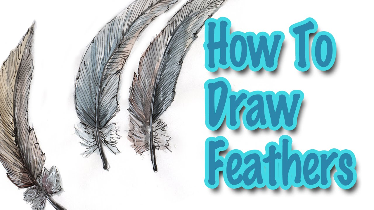 how to draw feathers using watercolors youtube. Black Bedroom Furniture Sets. Home Design Ideas