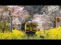 さよなら ムーミン列車 (いすみ鉄道)/ ムーミンラッピングが2019年3月末終了