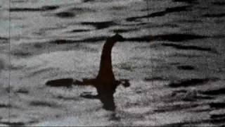 "The Best Loch Ness Monster Video of 2011 and 2012 - Steve Alten ""Nessie"" Spotted Caught On Tape Live"