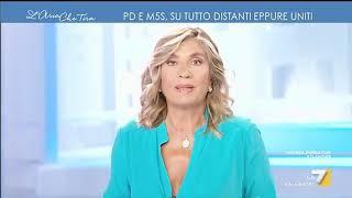 Riccardo Molinari contro Danilo Toninelli: