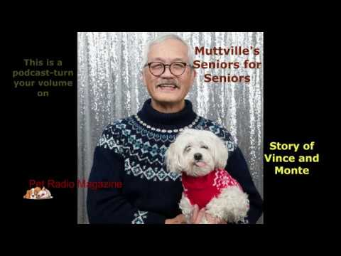Story of Vince & Monte