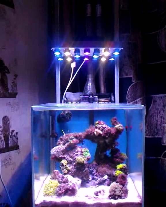 Как сделать светильник в аквариум своими руками 90