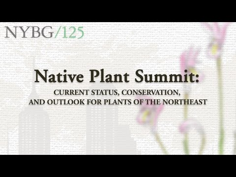 Native Plants Summit: Current Status, Conservation, And Outlook For Plants Of The Northeast