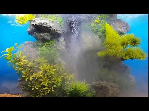 Aquaplantsonline - How to... EBI Aqua Della Waterfall Serie