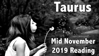 Taurus! Wow! You Have A Wish About To Unfold! Mid November 2019