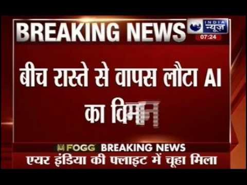 A rat grounds Air India's Milan flight