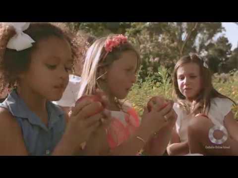 Catholic Online School - The Way HD