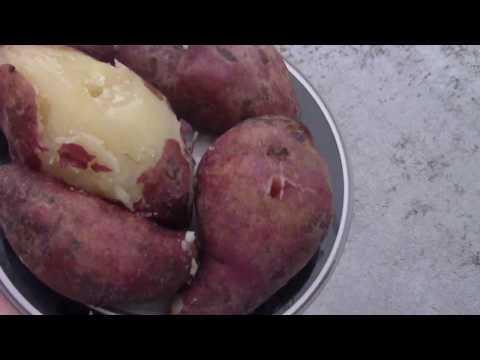 Making Boiled Bonito (Sweet Potato's Cousin, Great Natural Healthy Snack)