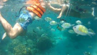 ทะเลกระบี่ เกาะพีพี อ่าวมาหยา ปิเละลากูน