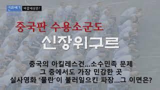 중국판 수용소군도 신장…