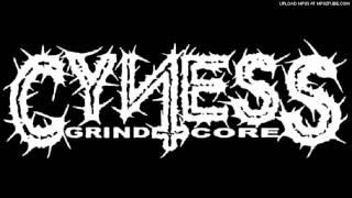 Cyness - Happy Slave
