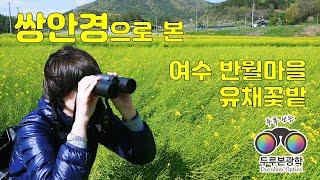 쌍안경으로 본 여수 반월마을 유채꽃밭 일대 풍경 Bin…