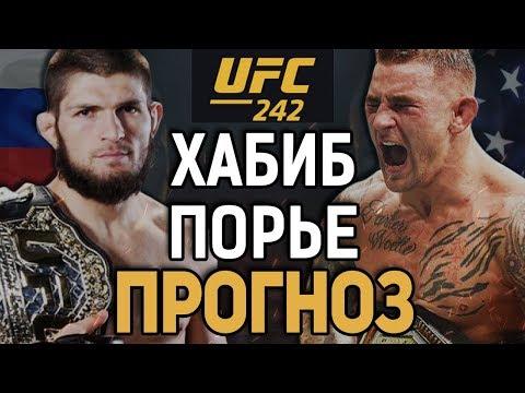 А ЧТО ЕСЛИ..? Хабиб Нурмагомедов - Дастин Порье / Прогноз к UFC 242
