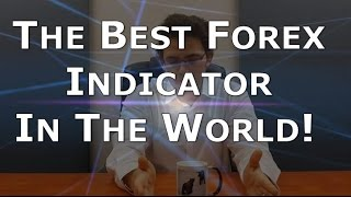 What is the BEST Forex indicator in the world?