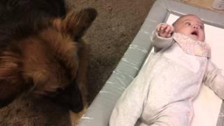 Cute baby and dog bonding