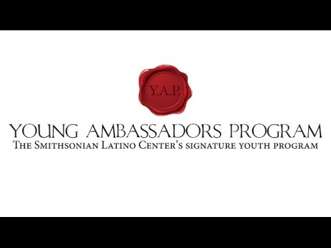 A Decade of Empowerment: Young Ambassadors Alumni Perspectives