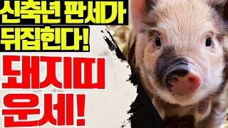 [ 2021년 돼지띠 신년운세! ] 나이별로 정확하게 보는 돼지띠운세 / 사주헌터 나산