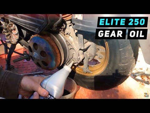 Honda Elite 250 Transmission Gear Final Drive Oil Change Assembly Mitch S Scooter Stuff
