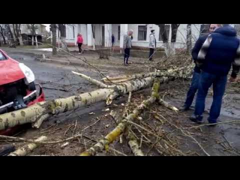Ураган в Электрогорске на Классона