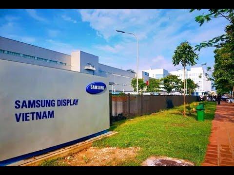ca mắc COVID-19 thứ 262 là công nhân Công ty Samsung Display Việt Nam  (SDV)