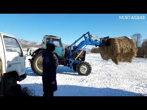 Мтз-82 /Закаменск, зима 2020 февраль