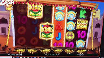 Cobra cash , new game , with feature