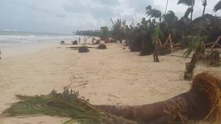 Beach after Maria Hurricane - Punta Cana #18