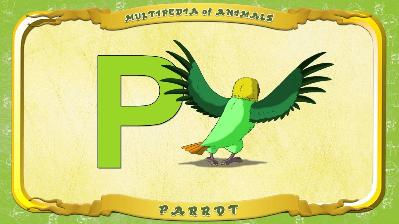 Letter Word Out Of Parrot