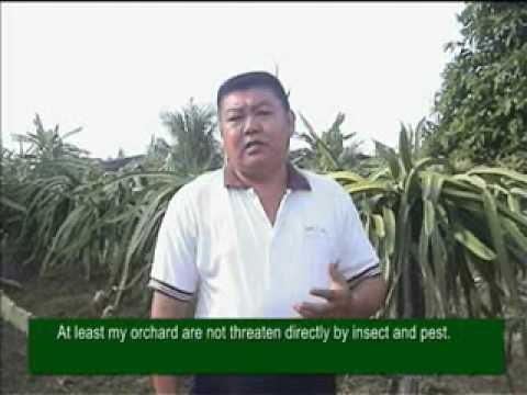 Eco Enzyme In Agriculture 02