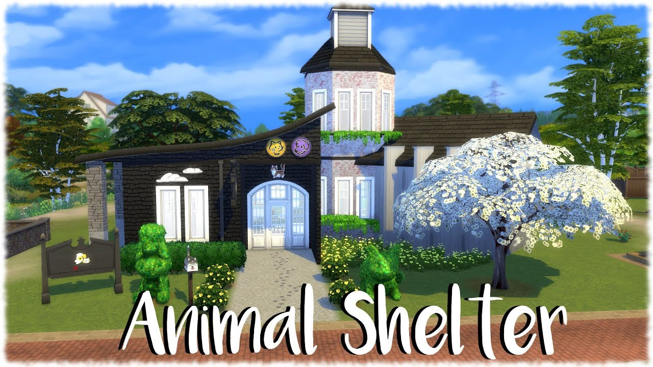 The Sims 4: Speed Build // ANIMAL SHELTER (CATS AND DOGS