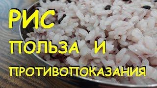 Рис. Польза и вред.