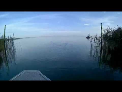 Рыбалка, Темрюк, осень 2019. Ловим густеру, тарань и т.д