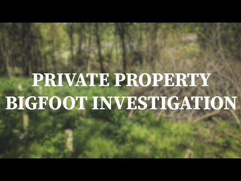 Investigating Bigfoot Activity On Some Private Land