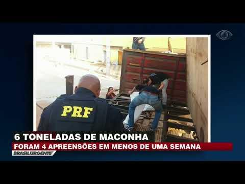 PRF apreende 2,5 toneladas de maconha em caminhão