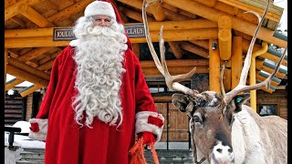 Reindeer in Lapland in Finland - poro - tourism video about Reindeer in Finnish Lapland