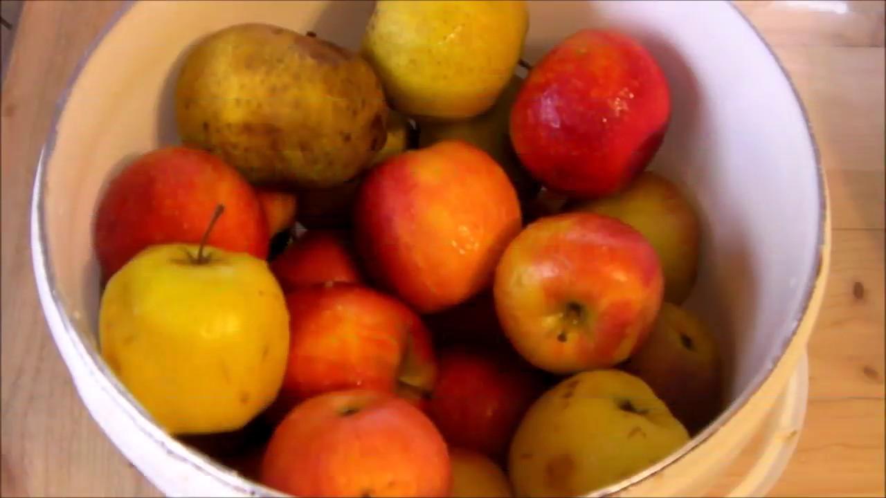 Comment faire du jus de pomme maison youtube - Jus de pomme maison ...