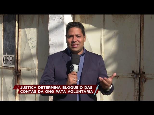 Justiça determina bloqueio das contas da ONG Pata Voluntária