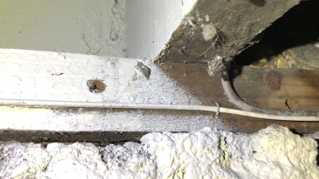 Morris Invest - Basement Part 1 (fungal growth, moisture intrusion, on tube assembly, tube terminals, tube fuses, tube dimensions,