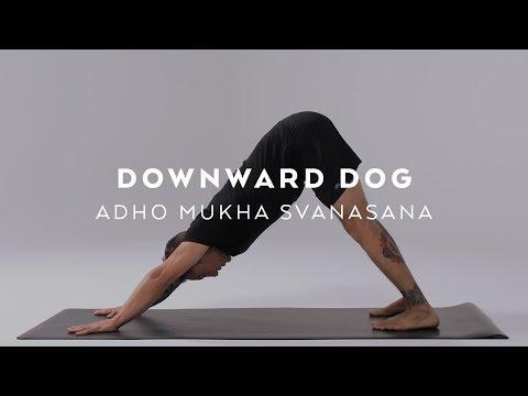 How to do Downward Dog | Adho Mukha Svanasana Tutorial with Dylan Werner