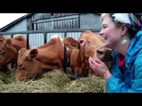 The Milking Parlour Film