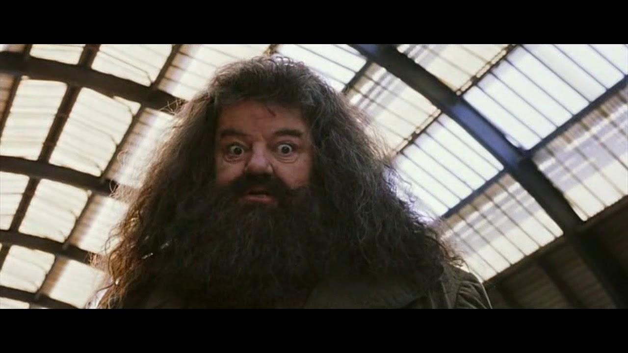 Гарри Поттер и философский камень (Кингс-Кросс) Убийцы ...
