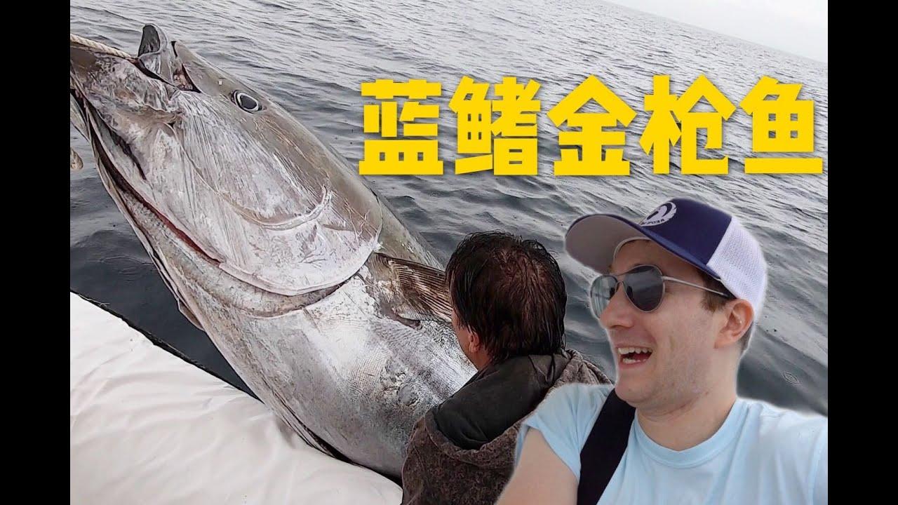 实拍美国渔民出海打蓝鳍金枪鱼,这竟是世界最贵的鱼!